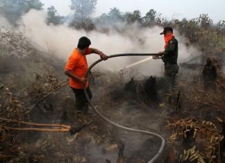 Petugas Manggala Agni berusaha memadamkan api yang membakar hutan dan lahan gambut di Pekanbaru, Riau. ANTARA FOTO/Rony Muharrman