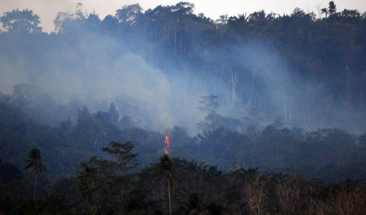 Asap akibat kebakaran hutan mengepul di kawasan Gunung Klabat, Minahasa Utara, Sulawesi Utara, Selasa (22/9). Kebakaran tersebut diduga akibat adanya upaya pembukaan lahan. ANTARA FOTO/Fiqman Sunandar/kye/15.