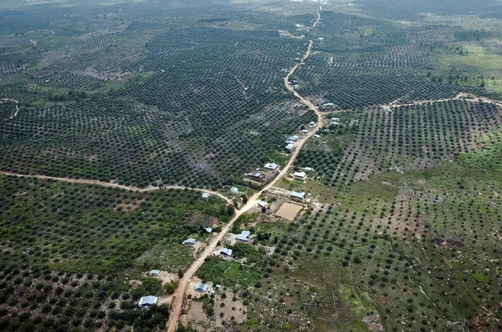 Perkebunan kelapa sawit dan permukiman terlihat dari udara di kawasan Taman Nasional Tesso Nilo, Provinsi Riau, Rabu (29/4). Berdasarkan data WWF dan Balai Taman Nasional Tesso Nilo, sekitar 60 ribu hektar dari total luas kawasan taman nasional, yang mencapai 83 ribu hektare, tidak lagi berupa hutan karena tingginya aksi perambahan yang mengalihfungsikan hutan menjadi kebun kelapa sawit dan permukiman. ANTARA FOTO/FB Anggoro/ed/Spt/15.