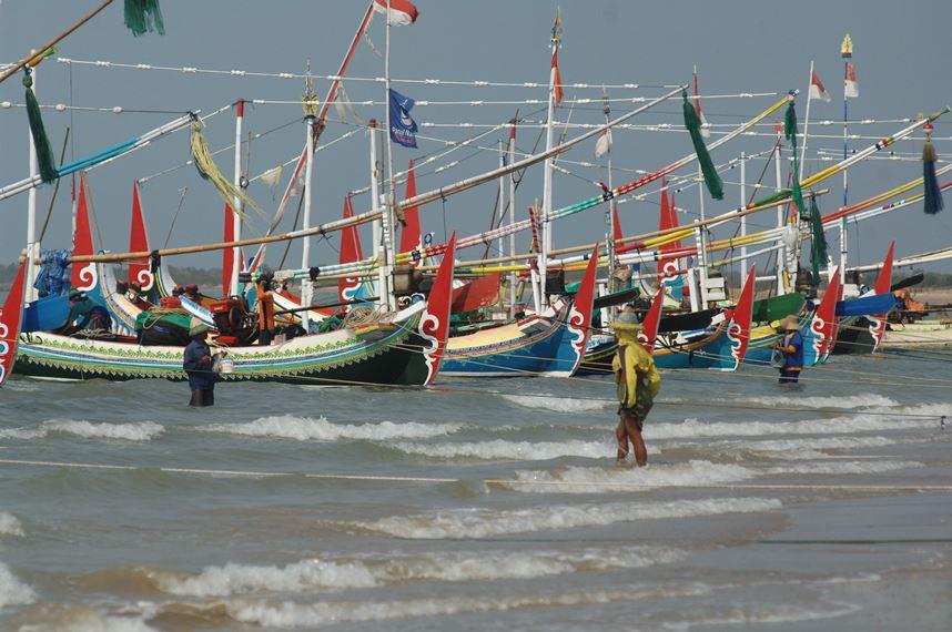 Nelayan teri ekspor beraktivitas usai melaut di Pantai Jumiang Pamekasan, Rabu (7/10). Dalam satu bulan terakhir nelayan di daerah itu mengaku pendapatannya turun drastis bahkan kerap merugi seiring minimnya tangkapan karena tingginya suhu permukaan perairan Madura. ANTARA FOTO/Saiful Bahri