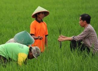 nu-dorong-jokowi-wujudkan-tanah-gratis-untuk-petani-miskin